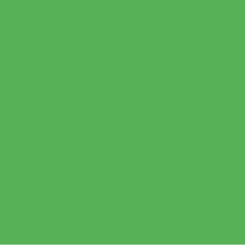 Light Bright Green Polyester Pigment (PCP3765)