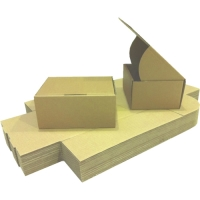 Easypack 002-HD - Small Folded Single Wall Cardboard Packaging Box